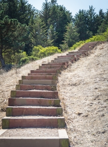 Mindfulness Stairs